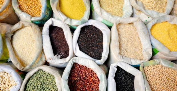 Les critères de qualité d'une semence paysanne
